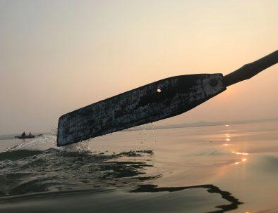 palio barche