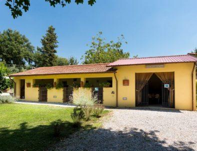 the outside area of Casa Lina
