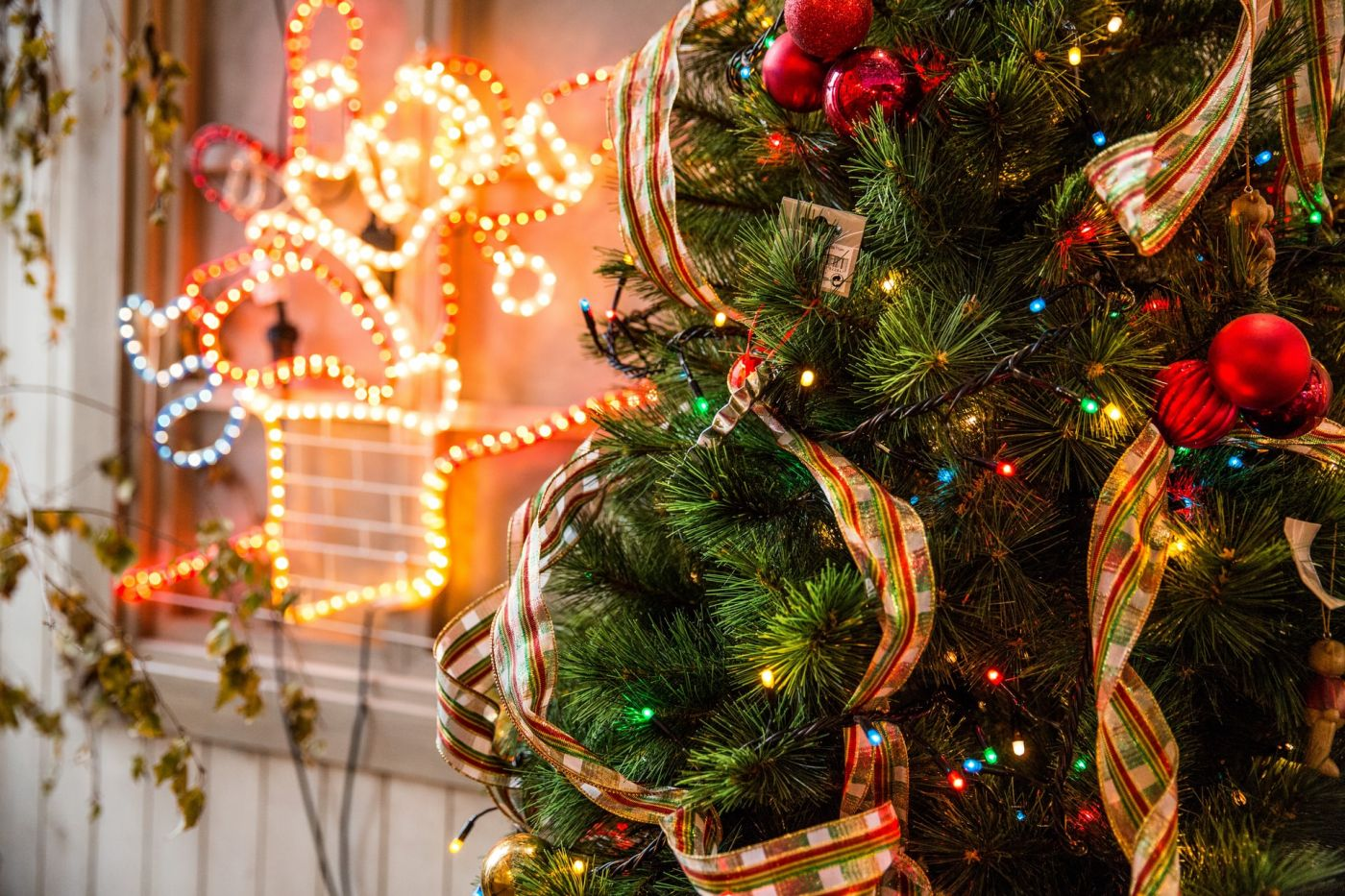 Christmas in Cortona